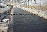 Negro Película de HDPE impermeable, HDPE Hoja, HDPE Geomembrana para la Ingeniería