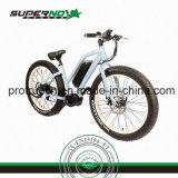 セリウムが付いているSamsungのリチウム電池の電気自転車