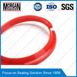 P1 anello di chiusura di gomma della polvere del cilindro idraulico di profilo NBR/FKM