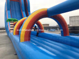 물 공원 위락 공원 운동장을%s 아이와 성인 팽창식 물 큰 활주를 위한 거대한 팽창식 물 미끄럼