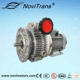Motores flexibles trifásicos del motor síncrono del imán permanente con el gobernador de velocidad (YFM-132/G)