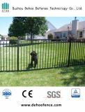 Сваренная гальванизированная загородка черного порошка Coated для сада