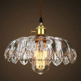 Illuminazione dell'interno interna per l'indicatore luminoso d'attaccatura della stanza del pranzo della lampada del pendente