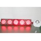 Semafori personalizzati del segnale LED del campo da giuoco di telecomando di 200mm