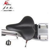 E-Motorino senza spazzola del blocco per grafici della lega di alluminio del motore 700c del Ce 250W (JSL034B)