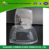 Container van het Voedsel van de Blaar van de douane de Duidelijke Verpakkende