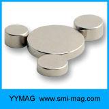 Imanes magnéticos del disco del neodimio del lechón