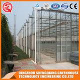 Serre chaude en aluminium de feuille de polycarbonate de profil de bâti en acier de Multi-Envergure pour le légume