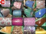 Prepainted покрынный цвет настилающ крышу катушка стального листа