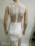2017 vestido de partido atractivo vestido de las mujeres al por mayor de Cordón blanco elegante de las señoras Noche