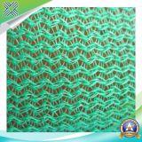 Réseau d'échafaudage en PEHD de 1 à 6 m / filet de protection / filet de sécurité