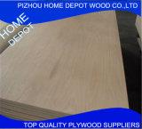 4 madera contrachapada comercial marina de la hoja de chapa del álamo de ' X 8 '