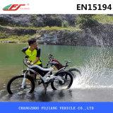 Два Колеса Электрический Велосипед с Двигателем A