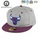 El bordado plano de la gran nueva manera 2016 se divierte los casquillos del Snapback del sombrero