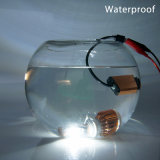 高品質35WフィリップスCsp LED T6 9006車の電球