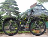 Электрический велосипед Bike с Bike автошины e /Fat Bike города e батареи лития (SY-E2705)