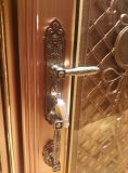 Nouvelle porte en acier inoxydable de couleur design pour villa ou appartement (S-3035)