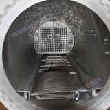 Die meiste populäre volle Automatisierung Schiene-Hing Laborgebrauch-zusammengesetzten aushärtenden Autoklav ein