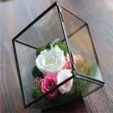 Contenitore quadrato acrilico trasparente di fiore della Rosa dei fori di abitudine 36