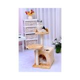 Casa de lã de qualidade de gato