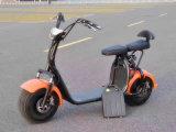scooter électrique de gros pneu de cocos de la ville 1000W avec la batterie amovible
