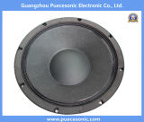 12PS100A Populairdere Spreker Subwoofer