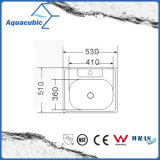 Раковина нержавеющей стали квадрата кухни Countertop (ACS5355)