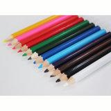 """Demi-longueur de 3,5"""" 12 crayons de couleur sur papier Box, mini Crayons de couleur"""