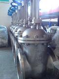 ANSI Wcb de acero al carbono o válvula de compuerta de brida CF8 150lb