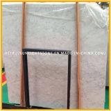 Lastre di marmo bianche del materiale da costruzione di Bianco Carrara per le mattonelle di pavimentazione/mattonelle della parete
