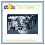 Haute efficacité moteur Weichai DEO615