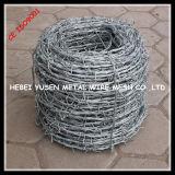 電子Galvanized Barb Wire Fence (専門の工場)