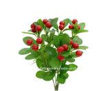 Artificial / Plástico / Seda Fruta Cherry Bush (26A4308)
