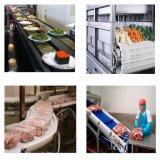 Transporte de rolo do grau do alimento da alta qualidade para a fruta com potência