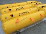 teste de carga material Waterbags do barco salva-vidas do PVC 500kg