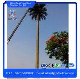 Спрятать украшения Palm Tree оцинкованных сообщения в корпусе Tower