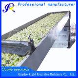 Acero inoxidable industrial de la máquina de secado de alimentos con circulación de aire caliente