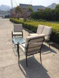 Presidenza di stile di disegno semplice e vestito d'acciaio della Tabella per la mobilia dell'interno della mobilia esterna