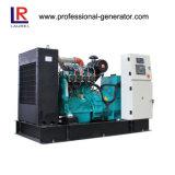 Высокая электрическая Effiency 50квт биогаза генератора