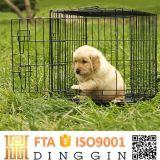 Faltender Haustier-Hundehütte-Hunderahmen mit zwei Türen