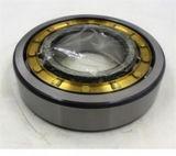 Cuscinetto a rullo cilindrico dell'acciaio al cromo di Nj222et NSK per il laminatoio (NJ222ET)