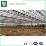 Folha de policarbonato transparente de alta qualidade de estufas para produtos agrícolas