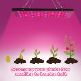 Indoor 75 LEDs Grow Light Panel 15W