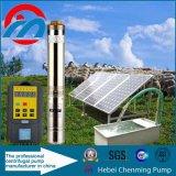 Pompes solaires d'irrigation de pouvoir de C.C 40W Sun pour l'irrigation d'agriculture
