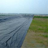 HDPE nero Geomembrane della fodera dello stagno 40mil per materiale di riporto