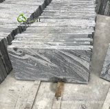 Le Grand G261 Juparana carreaux de granit gris pour mur/Plancher Decorating/gaine optique