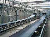 Do petróleo elétrico do transporte Ep100 do rolo correia transportadora de borracha resistente