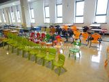 كرسي أطفال، رئيس المستوردة PP المواد، مكتب الطلاب وكرسي
