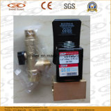 Solenoid automatico Valve con Stainless Steel 16bar