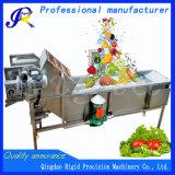 Automatische Unterlegscheibe-Gemüsereinigungs-Maschinen-Frucht-Waschmaschine